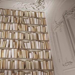 Ugepa Virtual Reality J430-27 Kitaplık Kütüphane 3 Boyutlu Duvar Kağıdı